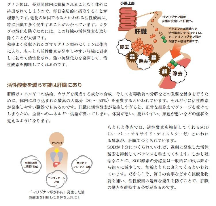 SODロイヤル 黒ゴマ(乳酸菌発酵)60包入は、私達の健康をサポートします。