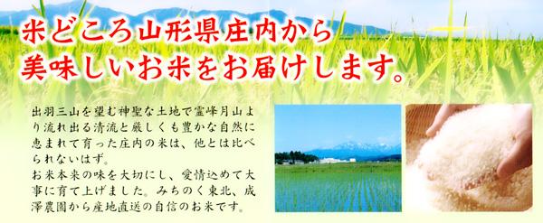 山形庄内産の美味しいお米