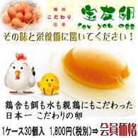 宝友卵30個 栄養価と味にこだわった、日本一のこだわりの卵