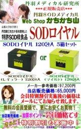 丹羽 SODロイヤル120包入 お得な5箱セット 【送料無料・更に特別割引も実施中!】