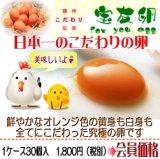 宝友卵 (1ケース/10個×3パック) 絶品こだわりたまご 産地直送
